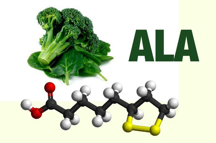 Alpha lipoic acid (ALA) bảo vệ mạch vành cho một trái tim khỏe mạnh